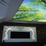 پروژه های سقف کشسان چاپی