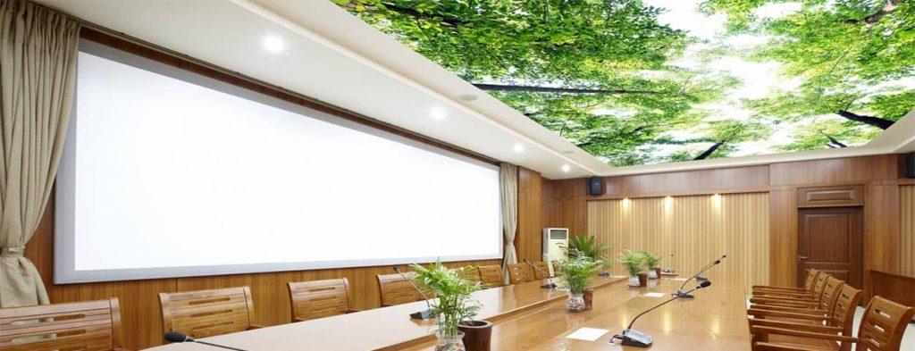 سقف کشسان؛ انواع سقف کاذب کشسانی